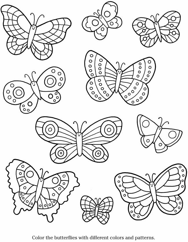 650x838 Best Images On Butterflies, Picture Frame