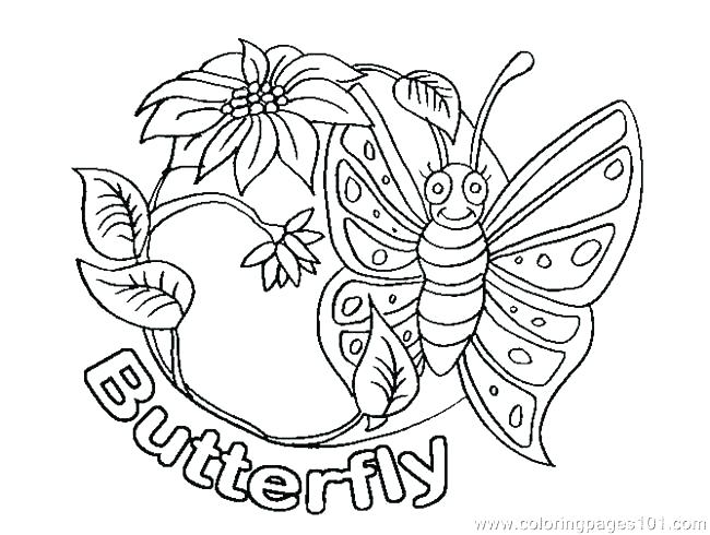 650x490 Small Butterfly Coloring Pages Printable Butterfly Life Cycle