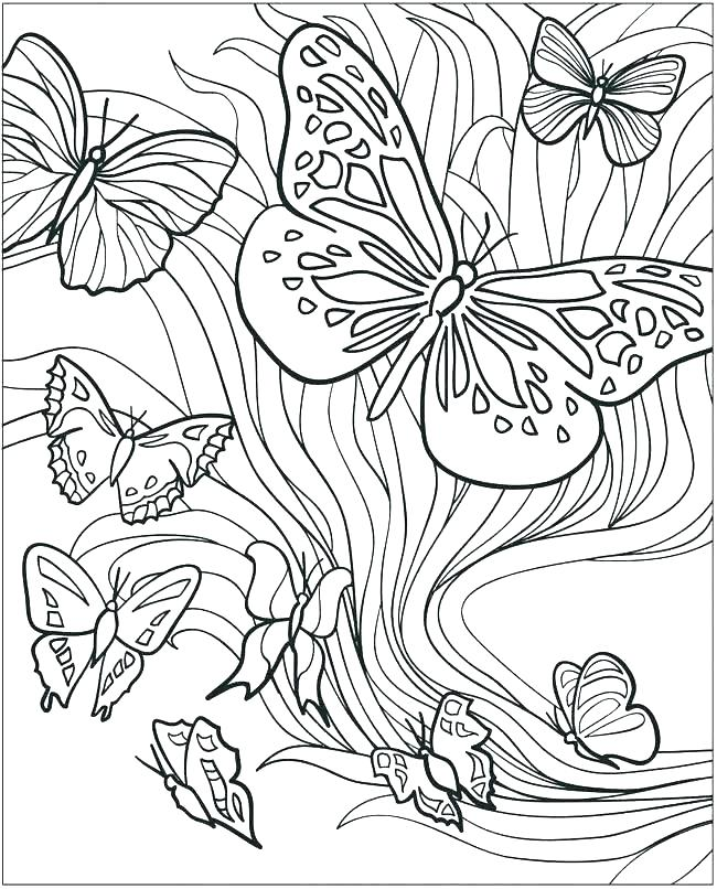 650x806 Small Butterfly Coloring Pages