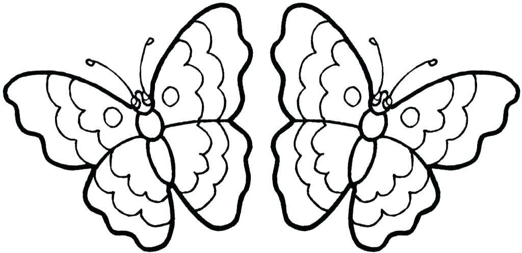 1024x498 Butterfly Coloring Page Printable Butterflies Coloring Pages