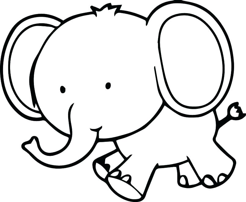 805x661 Coloring Pages Elephant Elephant Coloring Page Elephant Color Page