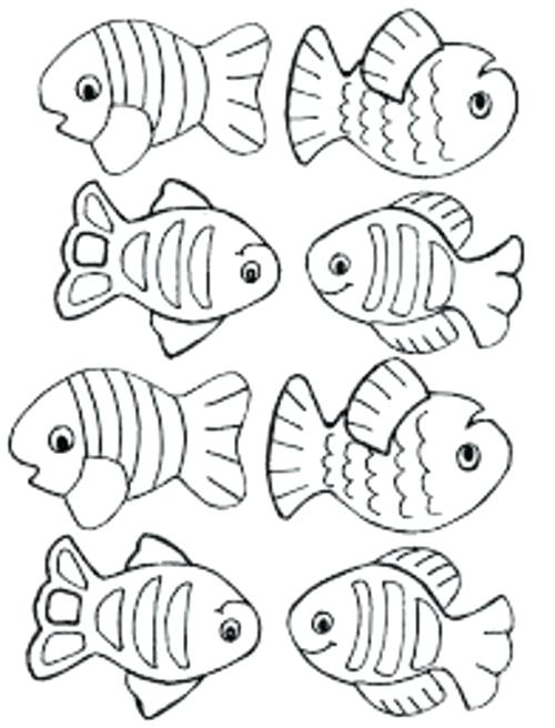 500x656 Trout Fish Coloring Pages Small Fish Coloring Pages For Kids Title