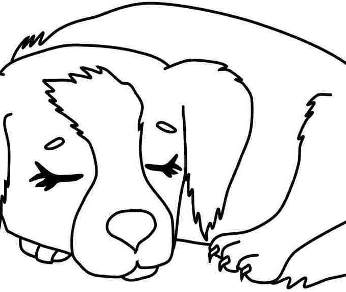 678x572 Dog Coloring Pages To Print Out Coloring Pages Delightful Dogs Dog