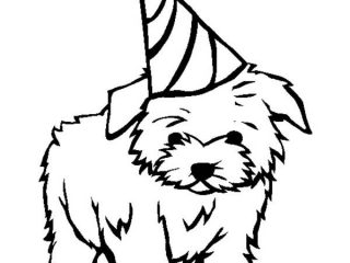 320x240 Small Dog Coloring Pages Small Dog Coloring Pages Ebcs