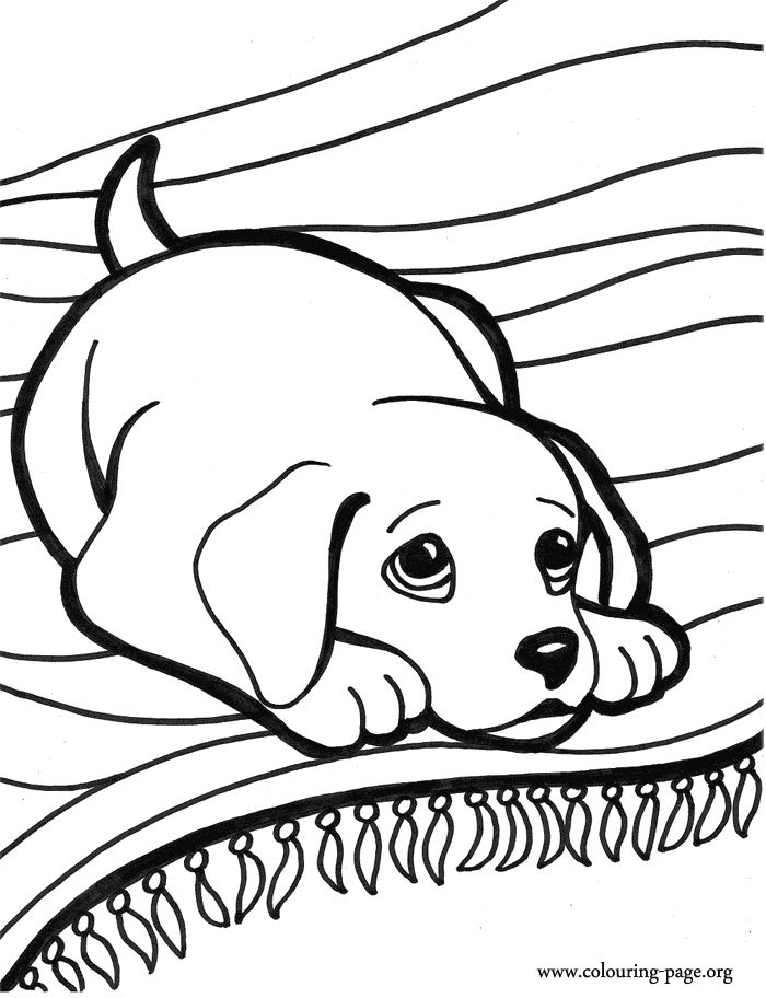 700x912 Coloring Pages Small Dogs Printable Puppy Coloring Pages Best
