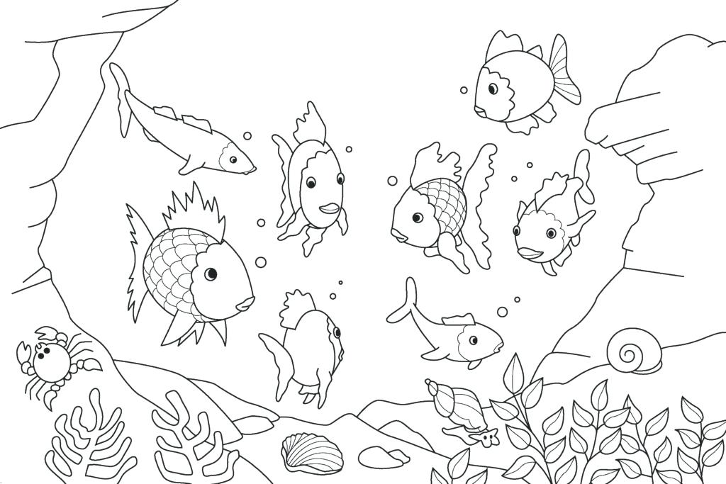 1024x683 Small Fish Coloring Pages For Kids Title Down