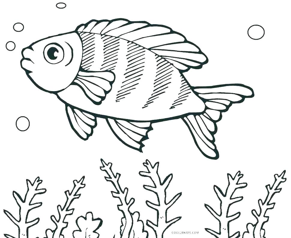970x794 Small Flower Coloring Pages