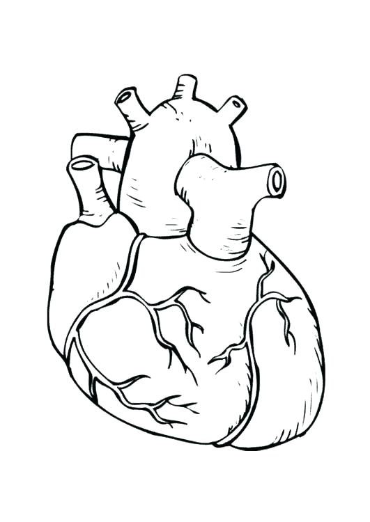 531x750 Love Heart Coloring Pages Heart Coloring Book Together With Small