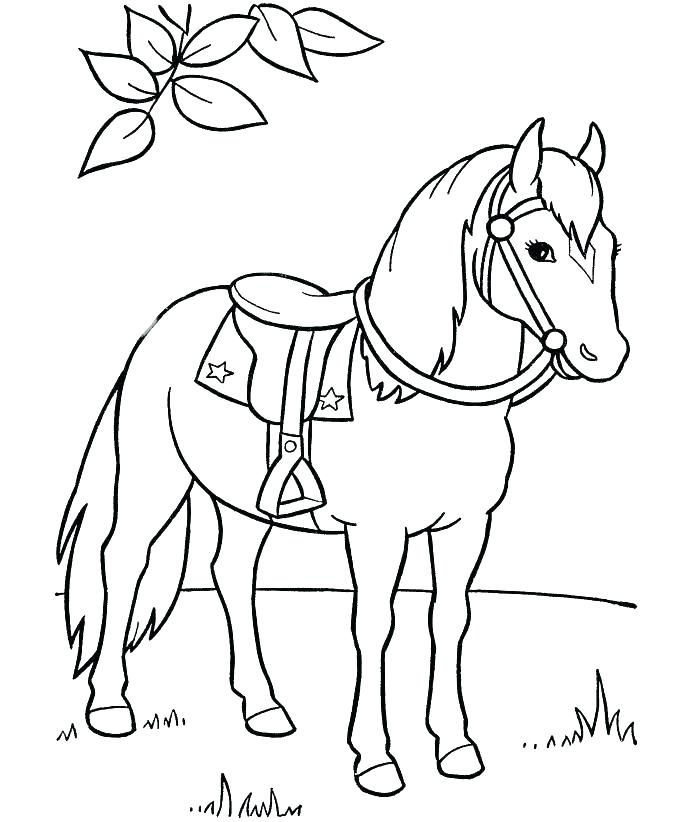 Small Horse Coloring Pages At Getdrawings Free Download