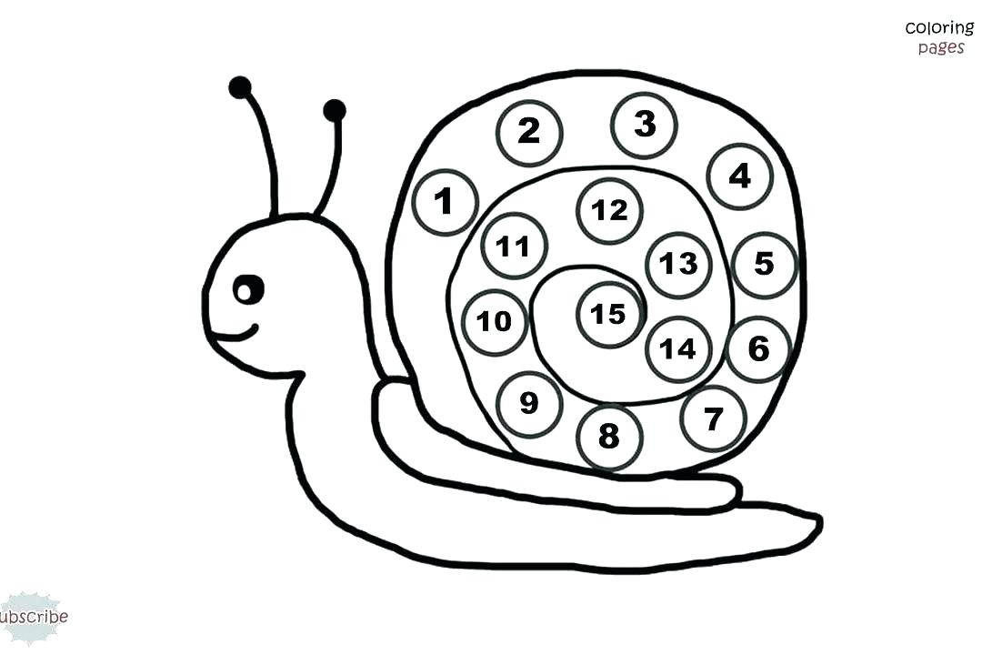 1080x720 Sea Snail Coloring Page Deepart