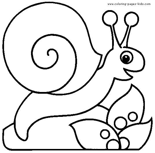535x529 Inspirational Snail Coloring Pages Coloring Ws