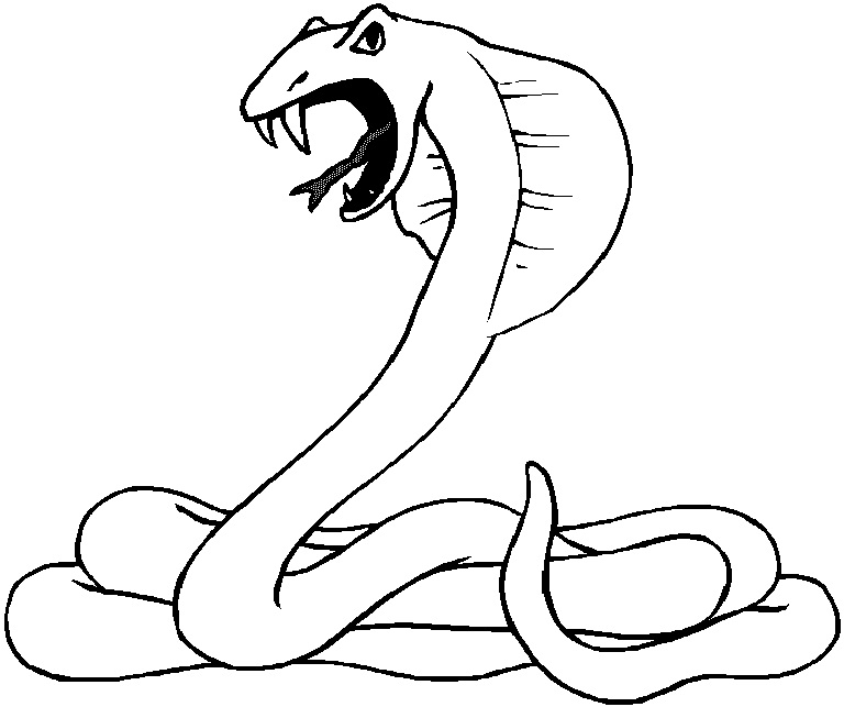 768x643 Snake Coloring Pages For Kids