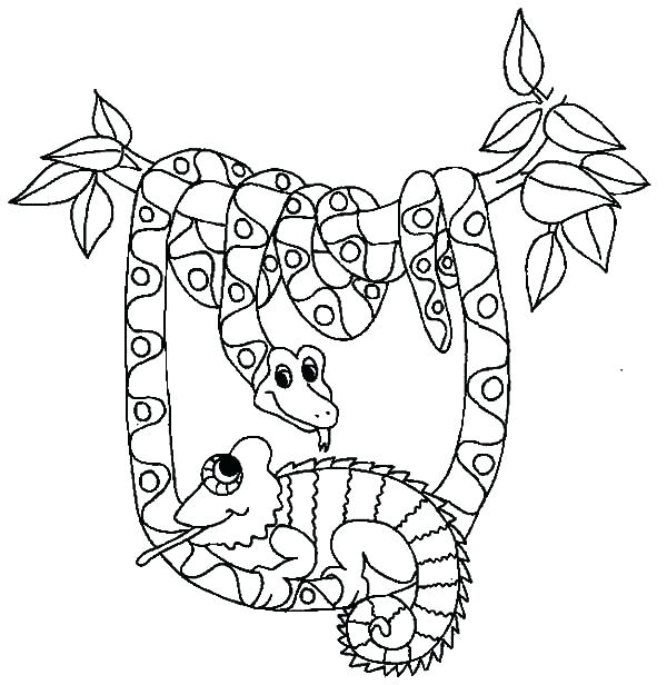 600x616 Snakes Coloring Pages Snake Color Page Be Friend With Snake