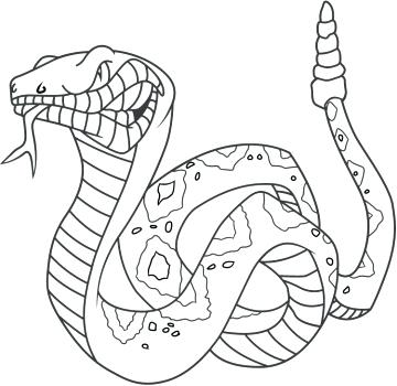 360x350 Coloring Pages Snake Snake Coloring Page Coloring Kids Snake
