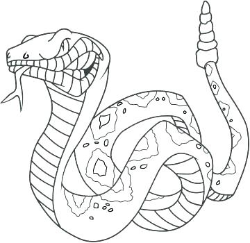 360x350 Anaconda Coloring Page Obsession Printable Snake Pictures Anaconda