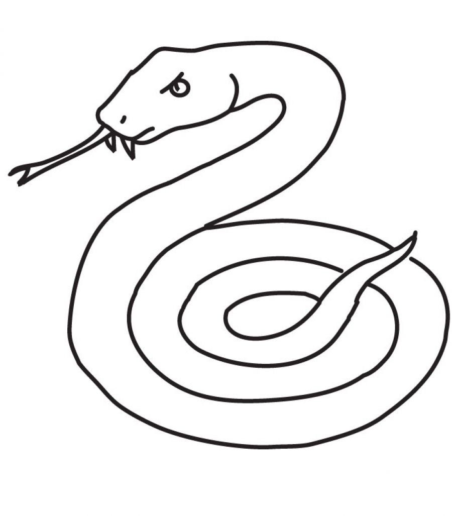 900x1027 Perfect Snake Coloring Pages Printable From Snake Coloring Page