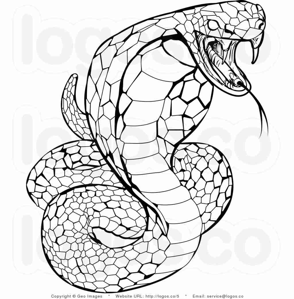 1024x1044 Awesome Pictures Of Snakes To Color Printable Snake Coloring Pages