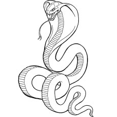 230x230 Snake Coloring Pages Printable Coloring Pages