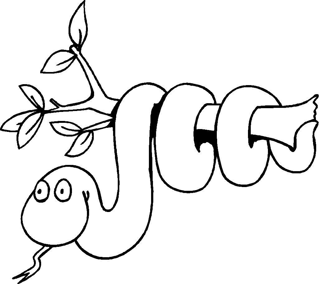 1024x911 Snake Coloring Pictures Acpra
