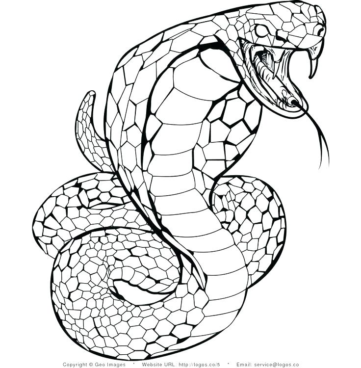 Snake Coloring Pages To Print at GetDrawings | Free download