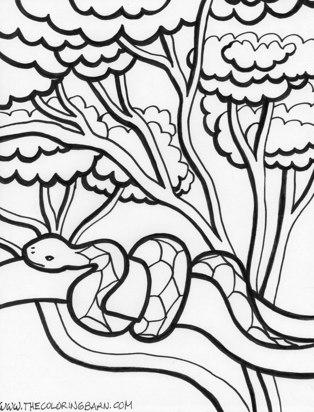 1000x1312 Coloring Picture Printable Snake Coloring Pages Coloring Me, Snake