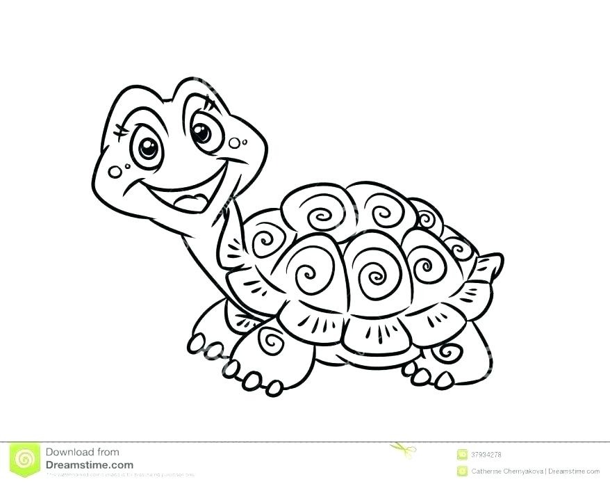 878x696 Coloring Pages Online For Adults Snapping Turtle Page Pin Drawn