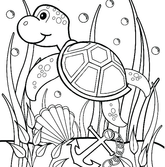 570x576 Coloring Pages Turtle A Turtle Coloring Pages Good Online Coloring