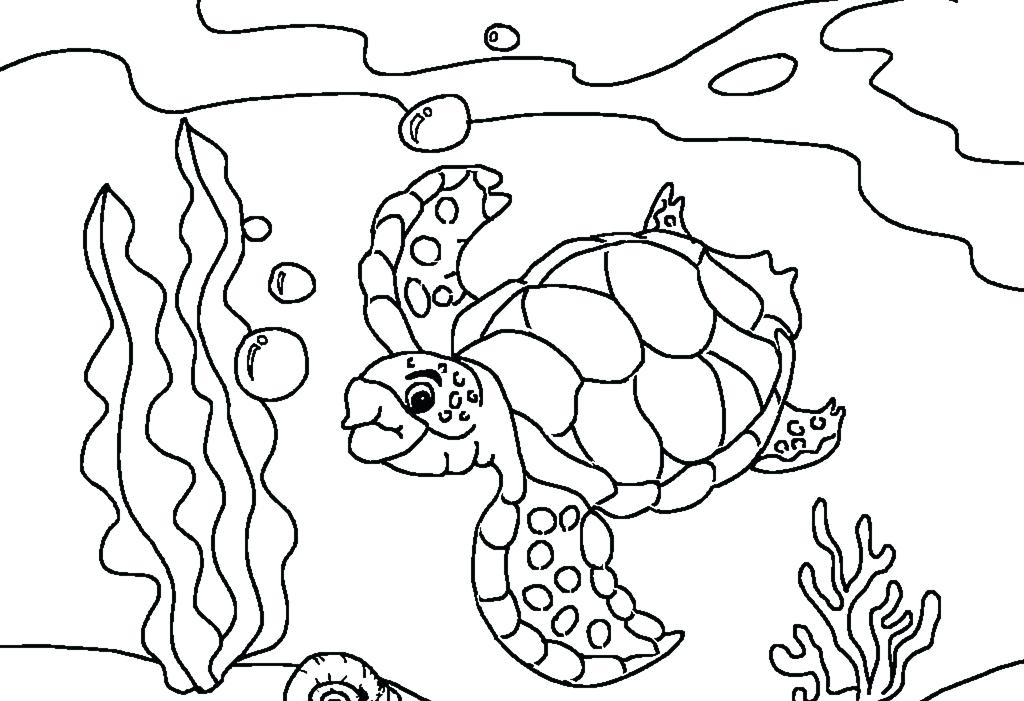 1024x701 Coloring Pages Turtle Free Printable Sea Turtle Coloring Pages