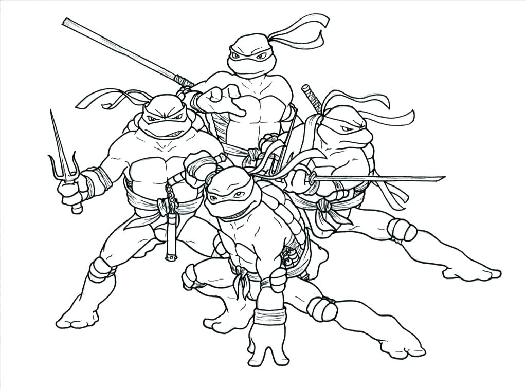 1023x759 Cute Turtle Coloring Pages Green Turtle Green Turtle Coloring Page