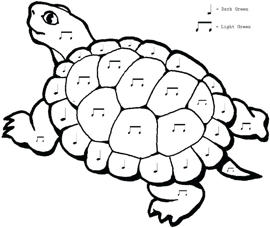 900x762 Sea Turtle Coloring Page Printable Cartoon Turtle Coloring Pages