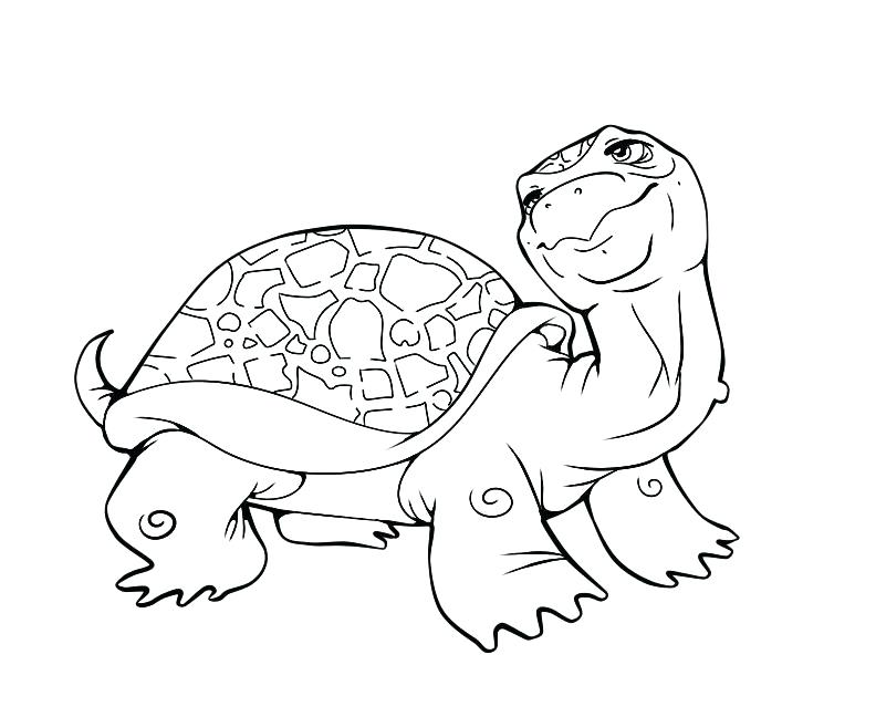 792x648 Baby Turtle Drawing Print Out Baby Turtle Coloring Book Pages Baby