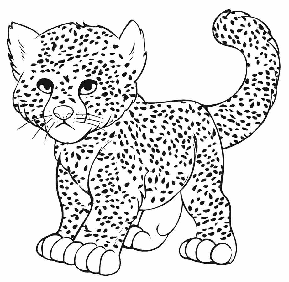 922x900 Leopard Print Coloring Pages Leversetdujourfo New Coloring Sheets