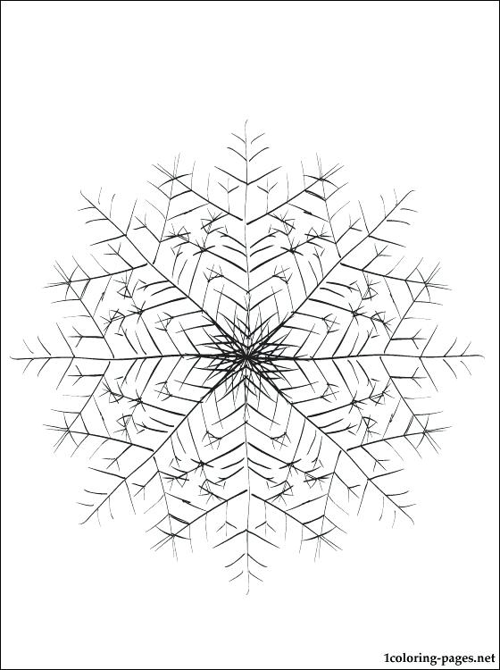560x750 Snowflake Coloring Pages Adirondack Snowflakes Snowflake Coloring