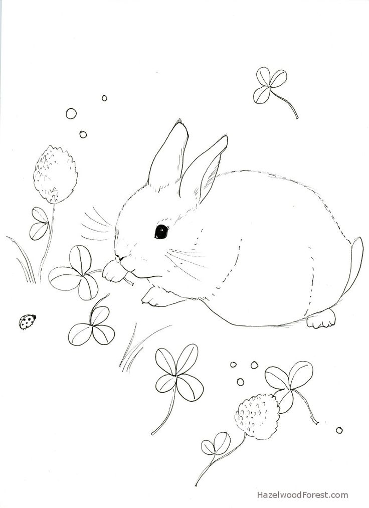 736x1013 Best Coloring Pages Images On Coloring Books
