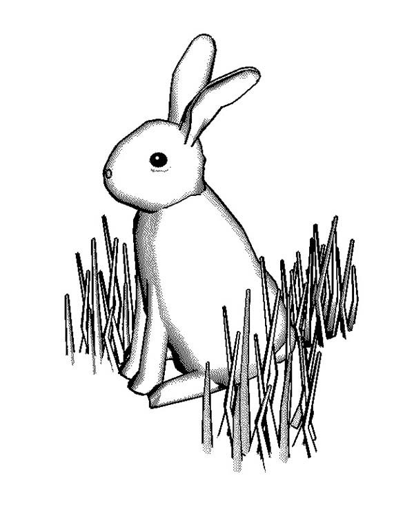 600x761 Bunny Rabbit Standing On Grass Coloring Pages Color Luna