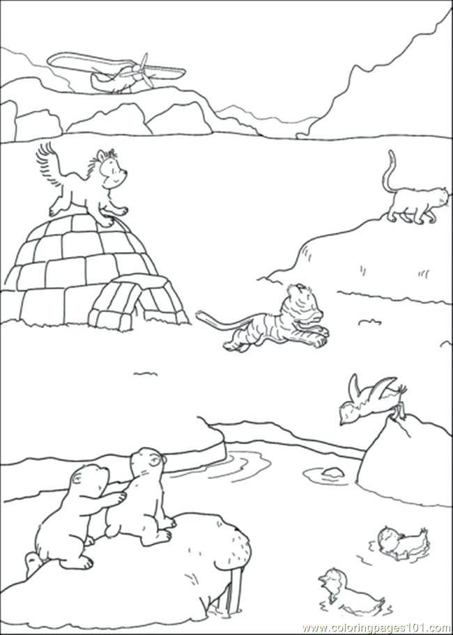 650x912 Dunker Animal Coloring Pages Snowshoe Animal Coloring Pages Polar