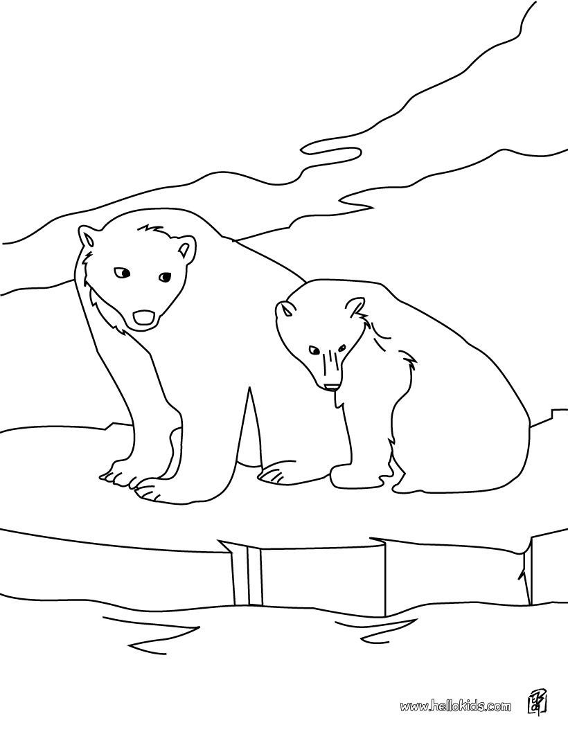 820x1060 Miracle Arctic Animal Coloring Pages Snowshoe Animals