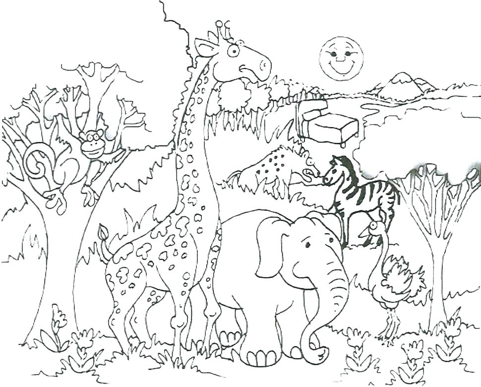970x780 Snowshoe Animal Coloring Pages Arctic Animal Coloring Pages
