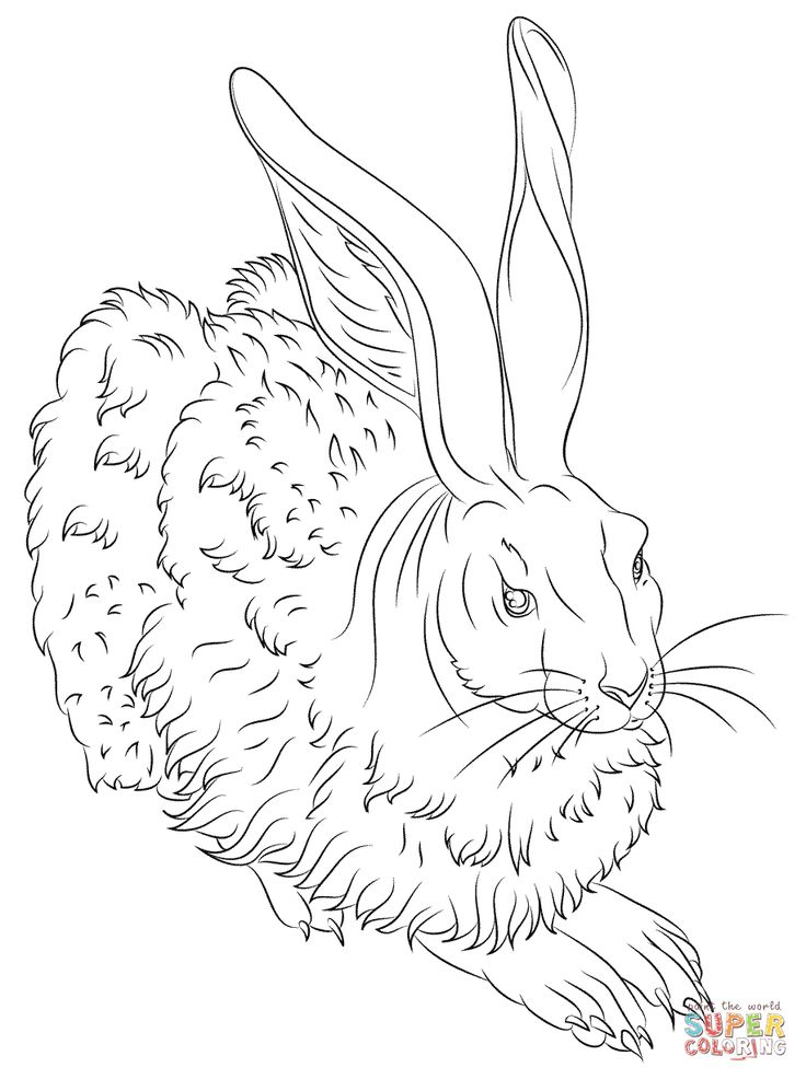 736x986 Best Images On Coloring Books