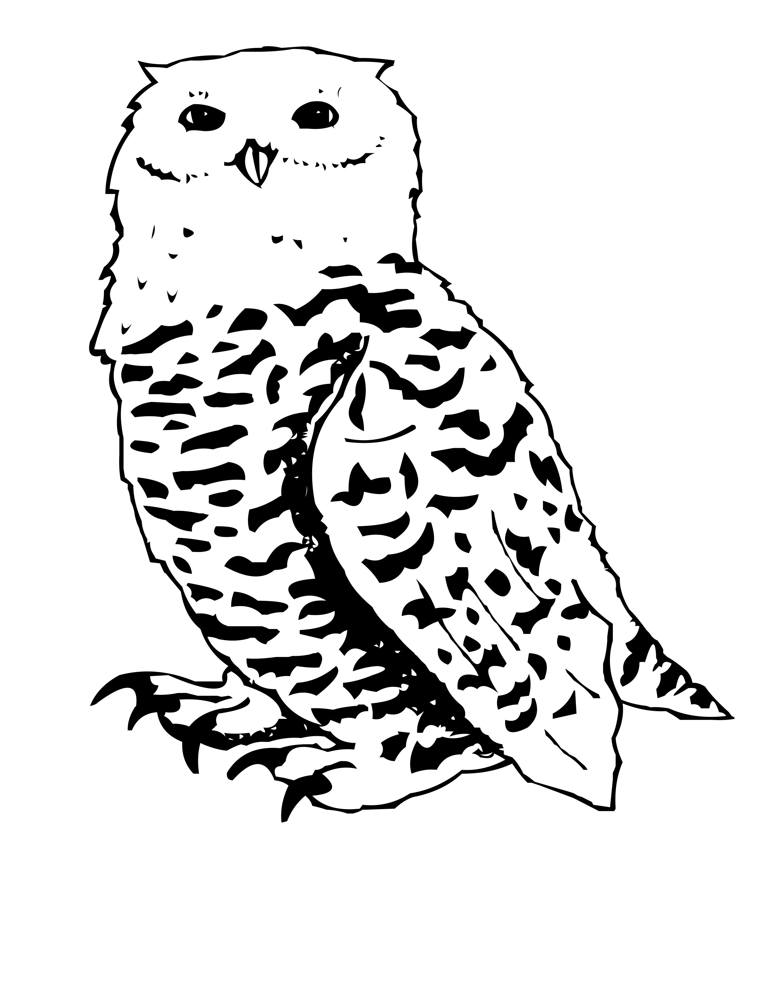 2550x3300 Fresh Snowy Owl Coloring Page Cartoon Pages Clickcoloring