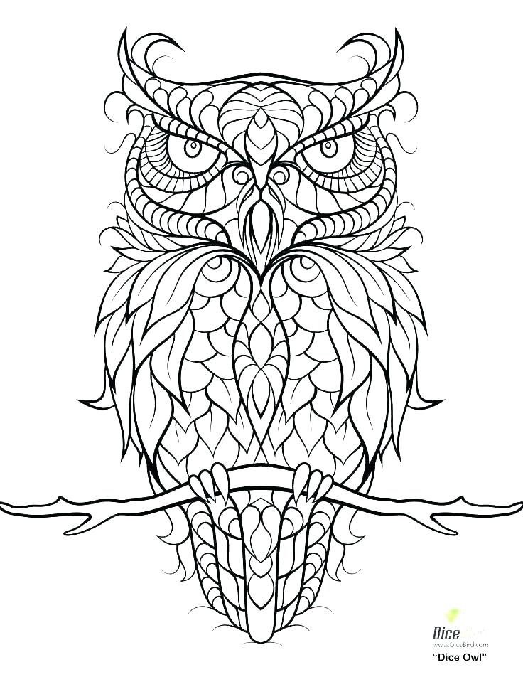 736x952 Snowy Coloring Pages Owl Color Pages Snowy Owl Coloring Pages Cute