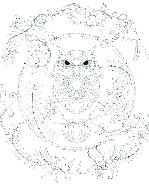 618x772 Snowy Owl Coloring Pages Owl Coloring Page Elegant Baby Owl
