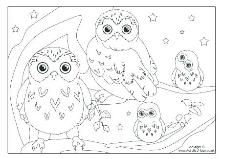 460x325 Snowy Owl Coloring Pages Snowy Owl Coloring Page Arctic Fox