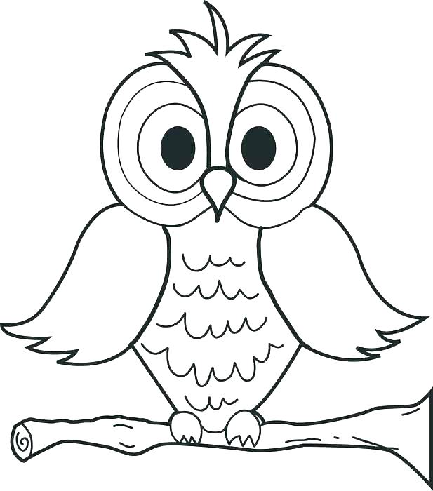 617x700 Snowy Owl Pictures Print Awesome Owl Coloring Pages New Baby Cute