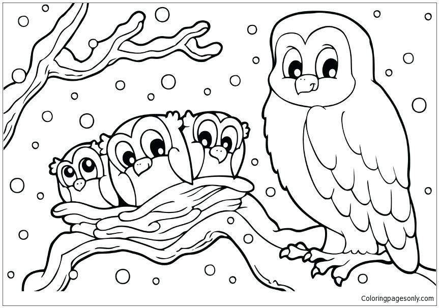 863x606 Buho Nival Para Colorear Winter Snowy Owl Coloring Page Dibujos