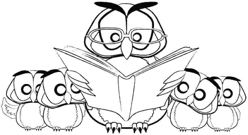 825x450 Captivating Snowy Owl Coloring Pages Owl Coloring Pictures