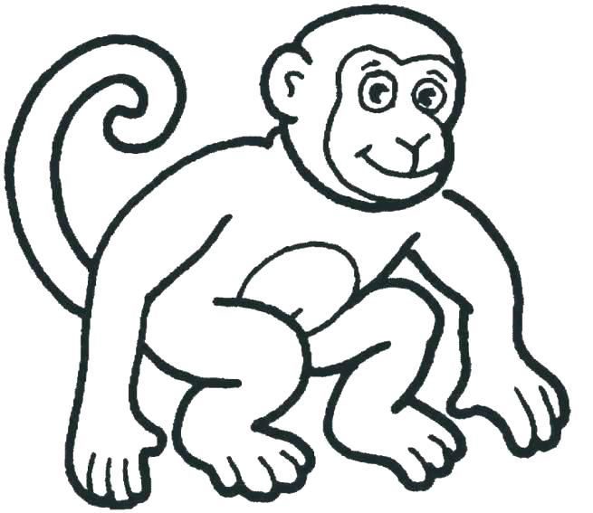 655x567 Printable Monkey Coloring Pages Monkey Coloring Page Free Monkey