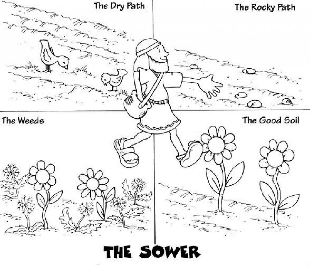 1024x877 Parable Of The Sower Coloring Page
