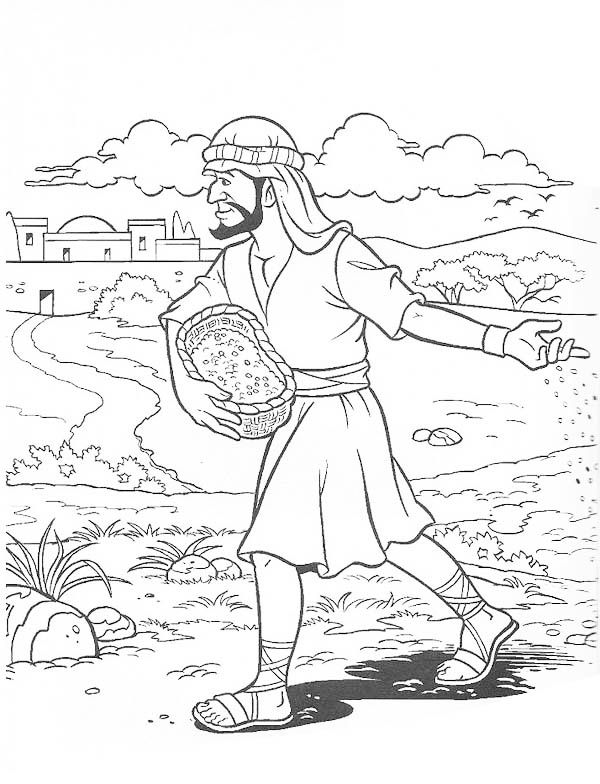 600x784 Parable The Soils Sower Sows The Seed Bible Nt Parable