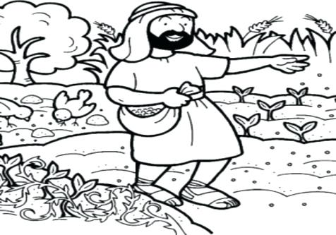 476x333 Soil Coloring Page Into Good In Parable Of The Sower Color